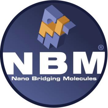 NBM Receives 2013 Frost & Sullivan Technology Innovation Leadership Award