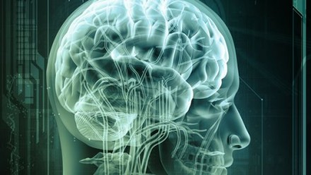Alzheimer: la perte de mémoire inversée chez des souris