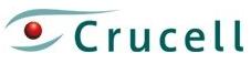 Crucell pourrait tracer jusqu'à 380 emplois à Berne