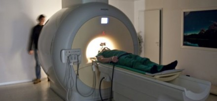 Neurosciences: mécanisme en cause dans les douleurs chroniques identifié à Berne