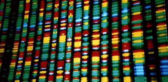 Un test ADN de personnalité développé en Valais