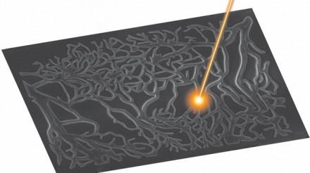 Des lasers pour sculpter et faire croître des tissus vivants