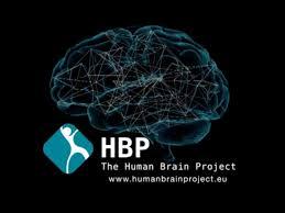 Nouvelle gouvernance pour le Human Brain Project