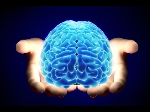 Unravelling the secrets of the brain … in the Health Valley