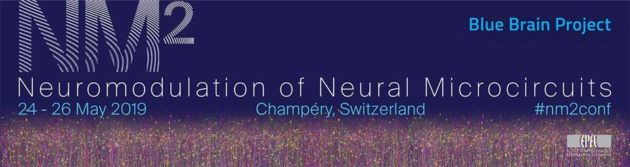 Second Neuromodulation of Neural Microcircuits NM² Conference (May 24-26, Champéry)