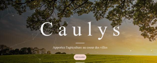 [UniverCité] Caulys remporte le prix du jeune entrepreneur de la CCEF