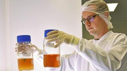 Icare ouvre une filiale en Suisse pour conquérir de nouveaux clients