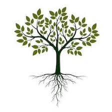 [Opinion] Expatriation des assets de Symetis : cultiver l'écosystème pour enraciner nos entreprises