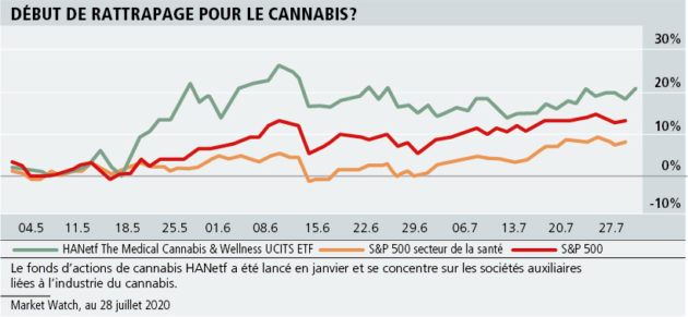 ETF: le cannabis qui ne fait plus planer