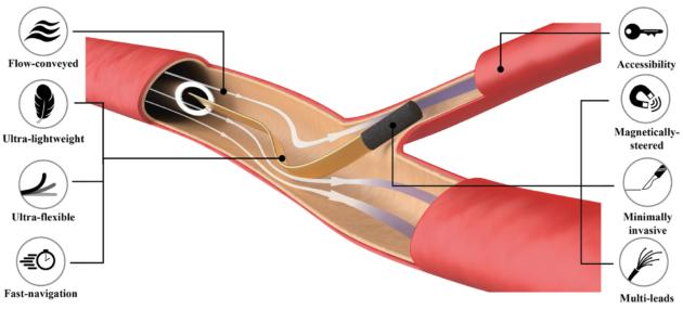 Un fil de pêche pour atteindre les capillaires