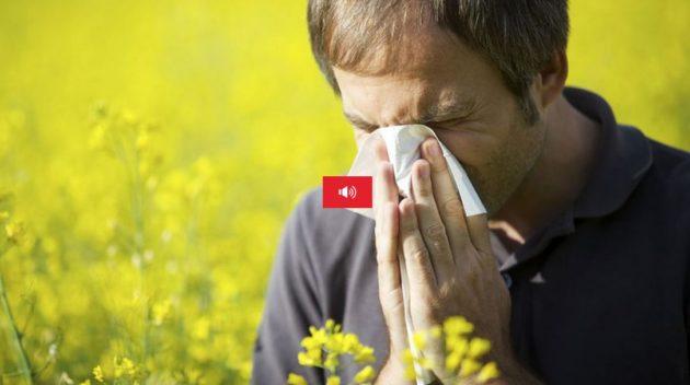 Les allergies aux pollens pourraient devenir un problème toujours plus sérieux