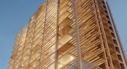 Du bois pour construire toujours plus haut